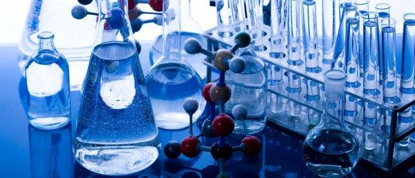 Химики МГУ изобрели биопрепарат, разлагающий пестициды