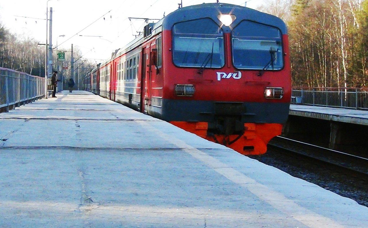 Женщина с сыном попали под электричку врайоне станции Щербинка