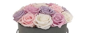 Уникальное предложение – оптовые продажи стабилизированных роз