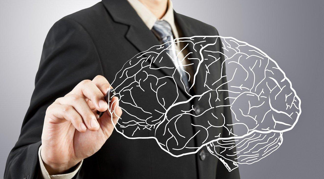 Ученые отыскали способ сохранить память человека даже после смерти