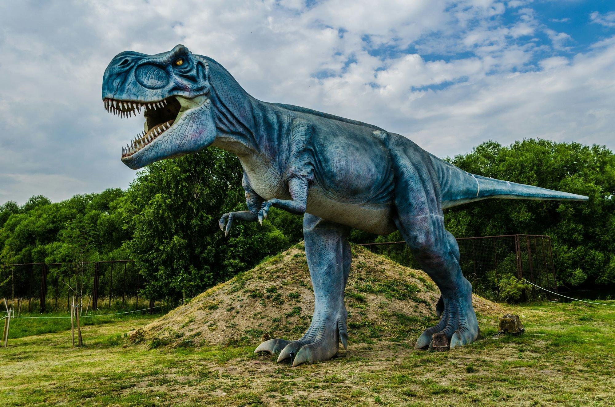 Все картинки тираннозавра