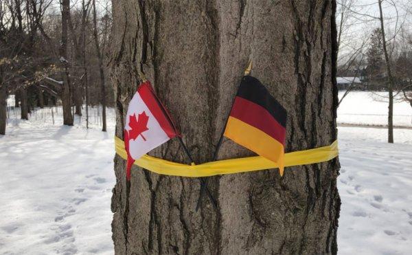 В Канаде встретили короля Бельгиис флагом ФРГ