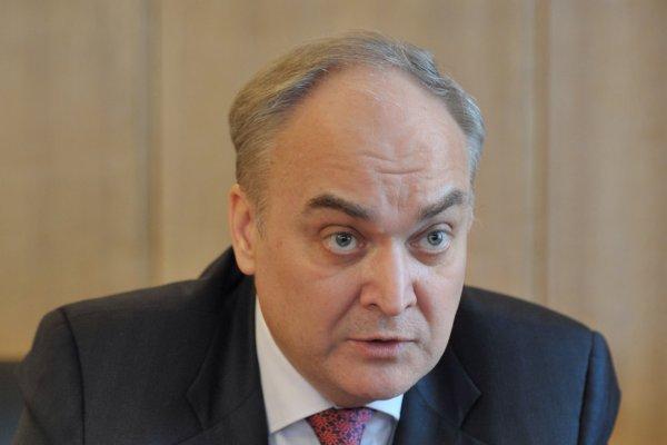 Анатолий Антонов: На досрочных выборах в США были провокации
