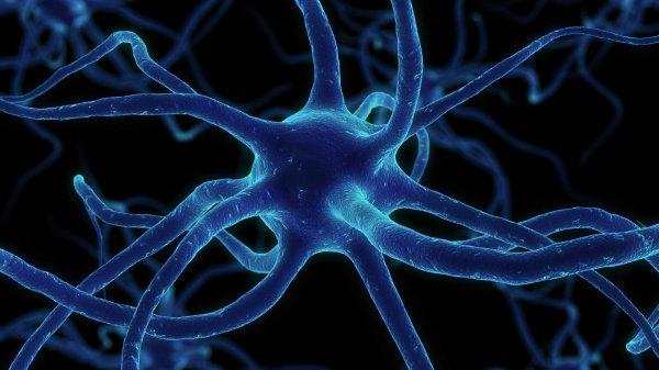 Ученые: Особенность белка нацеливаться на лекарство рассекречена