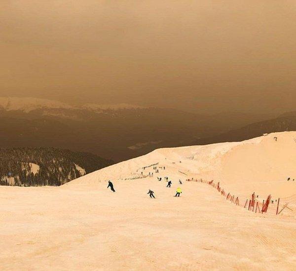 Желтый снег в Сочи привел в ужас туристов и местных жителей