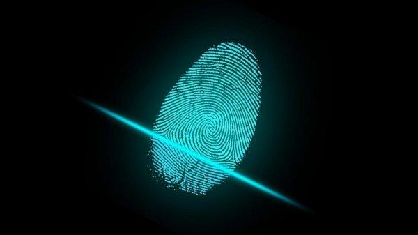 В новом смартфоне Huawei Mate 20 разместят сканер отпечатка пальцев под экраном