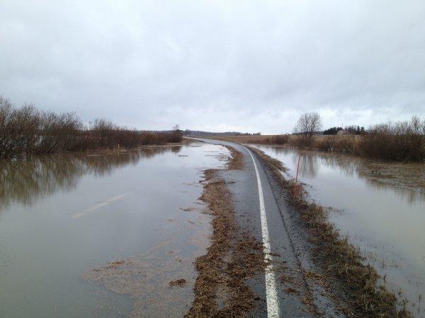 Тысячи домов были подтоплены паводком на Алтае