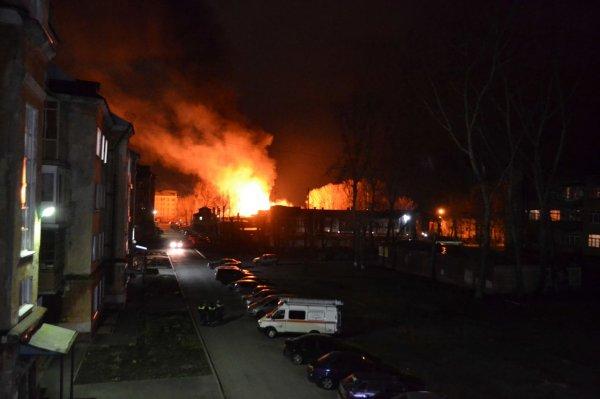 Лена Миро назвала виновников пожара в Кемерове