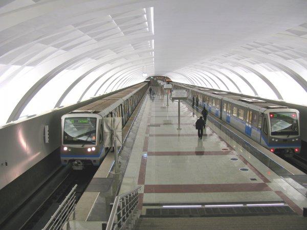 На салатовой ветке столичного метро произошёл сбой в движении поездов