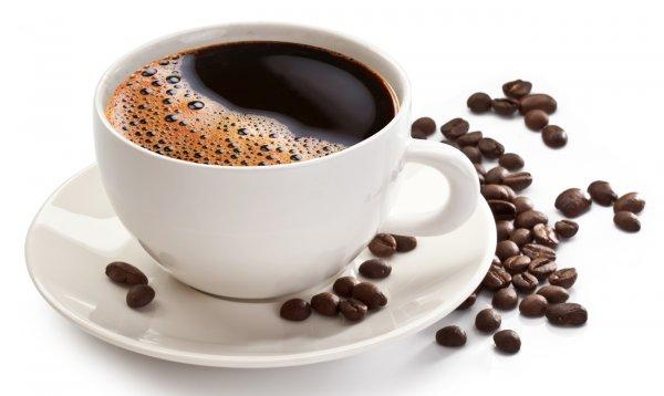 Житель Санкт-Петербурга бросил в закрывающееся американское генконсульство чашку с кофе