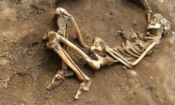В Мексике во время раскопок была обнаружена могила с массовыми захоронениями
