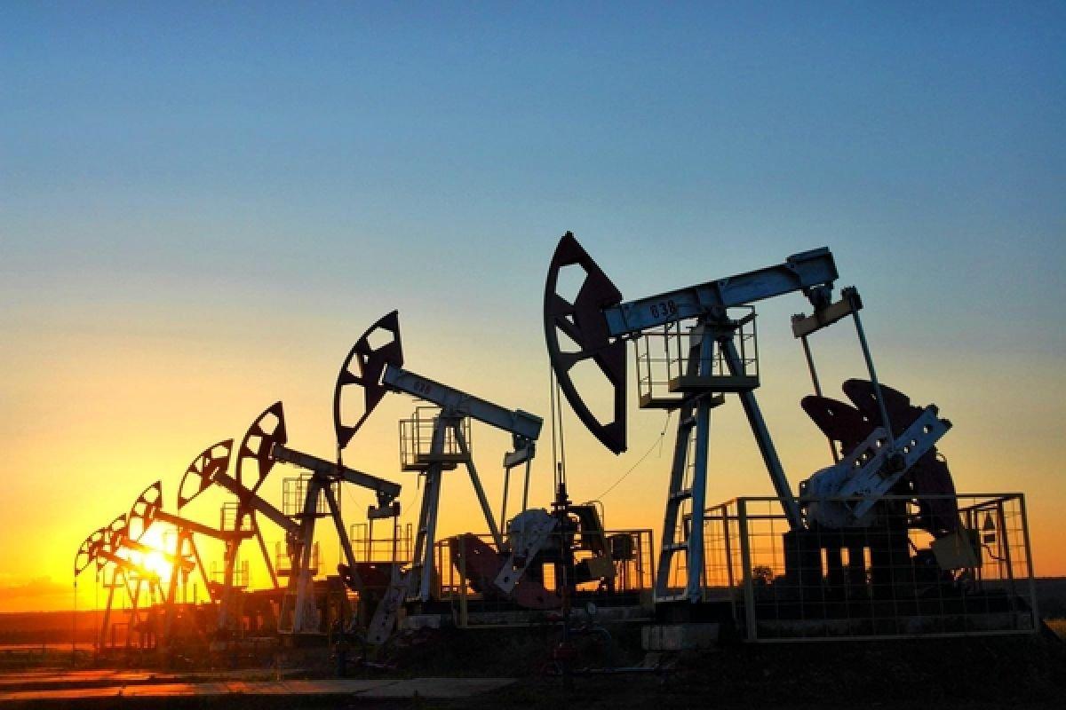 ВБахрейне отыскали крупнейшее практически за90 лет месторождение нефти