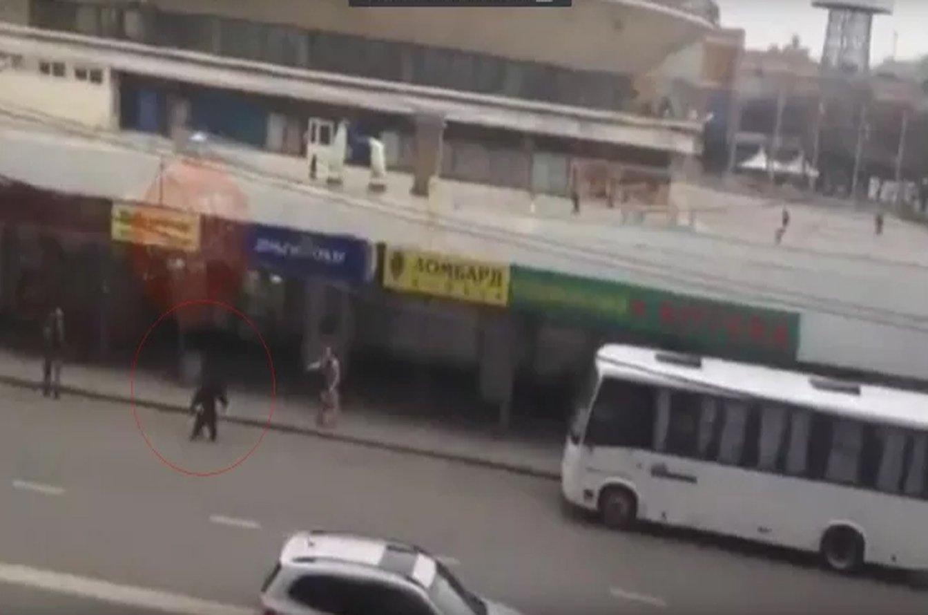 Кинг-Конг по-краснодаски: изКраснодарского цирка убежал шимпанзе