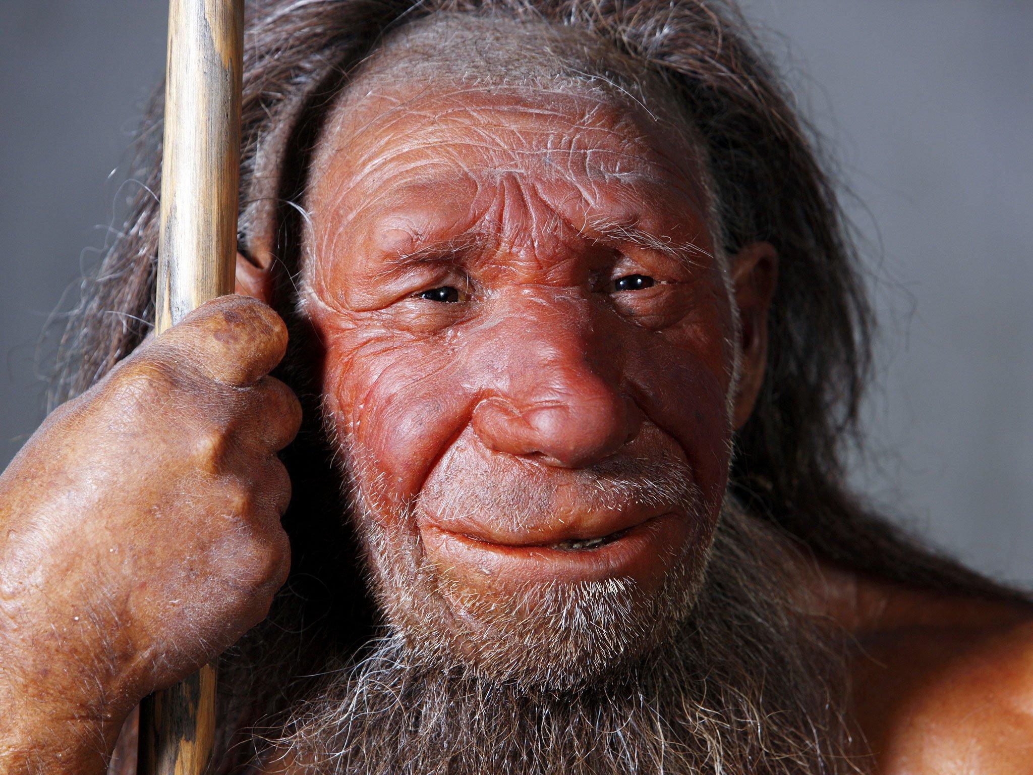 Антропологи узнали, зачем большой нос был нужен неандертальцам