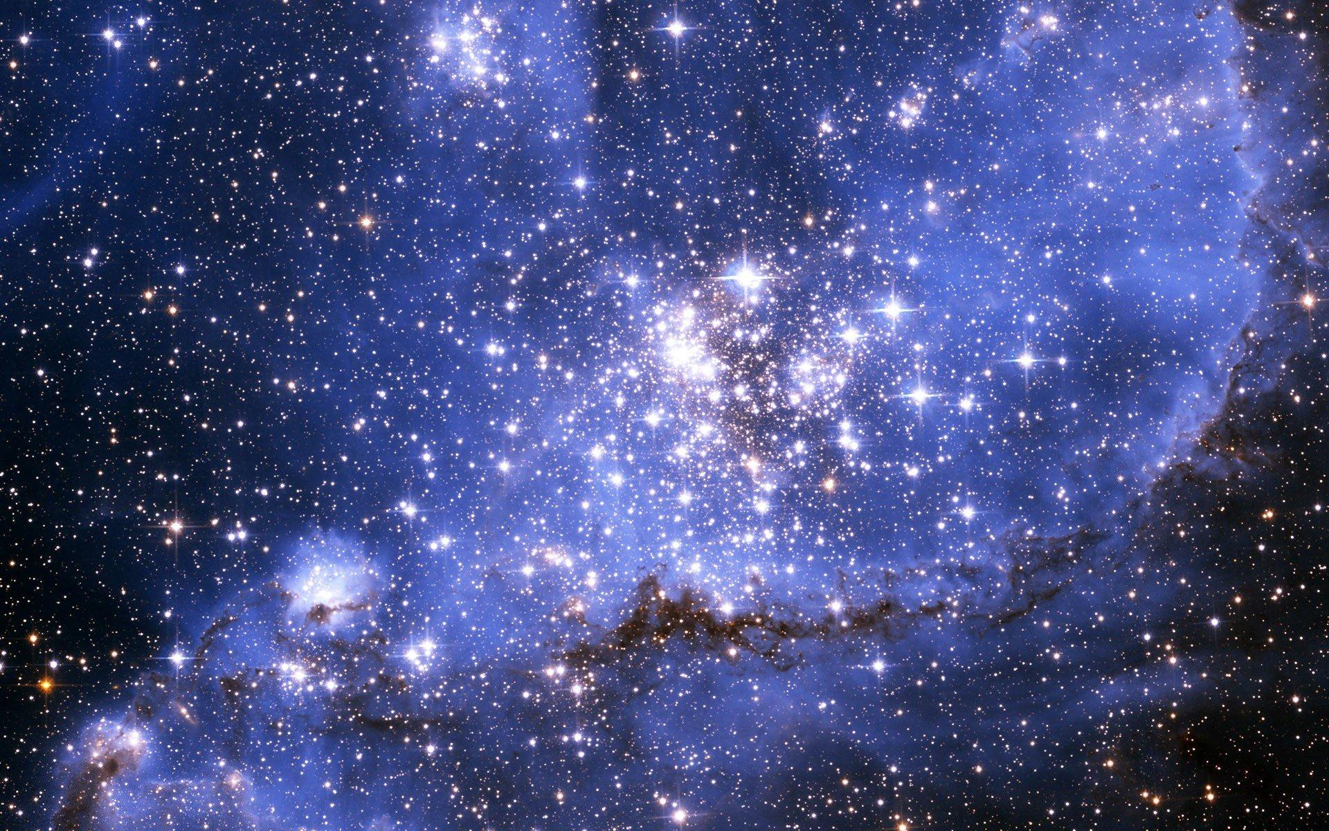сложным при все красивые картинки звезд репейное
