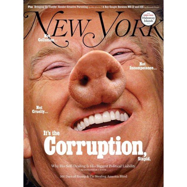 New York Magazine поместил на обложку