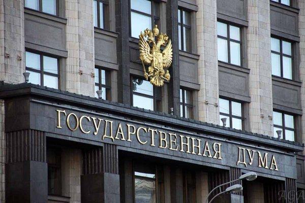 У Госдумы задержали активистку с картонной фигурой Слуцкого