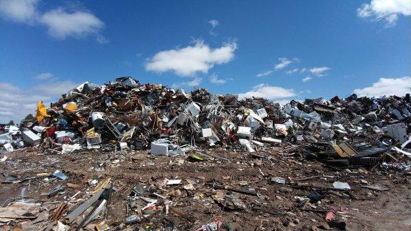 Воробье указал на ответственных за мусорные полигоны в Подмосковье
