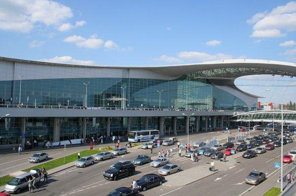 ФАС добилась снижения цен в ресторанах московских аэропортов