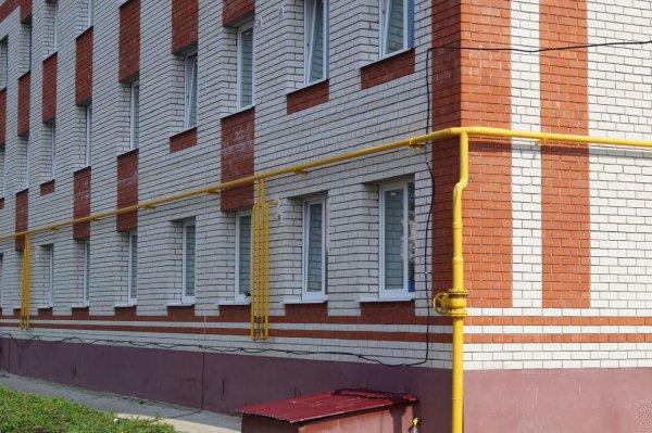 В Смоленске десятилетняя девочка вскарабкалась на крышу по газовой трубе