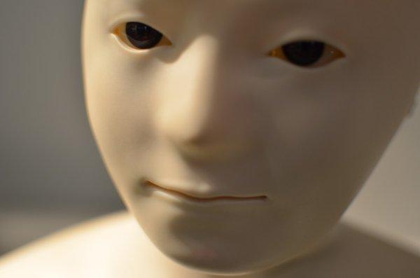 Британцы создали галантного секс-робота для одиноких женщин