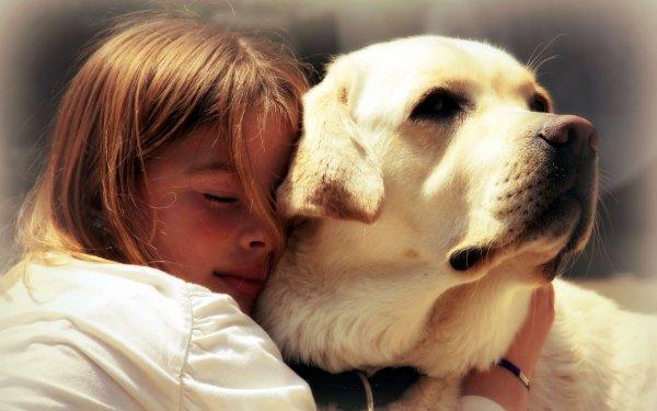 Ученые: Собаки способны различать эмоции человека