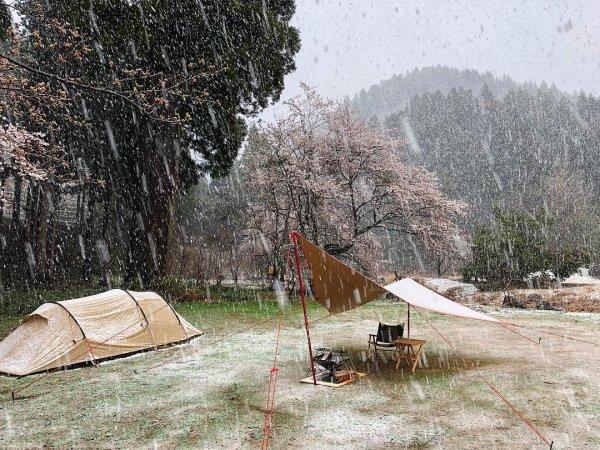 Впервые за 17 лет у Японского моря выпал снег