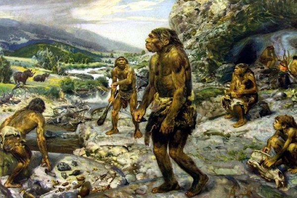 В Испании ученые нашли деревянные инструменты возрастом 90 тысяч лет
