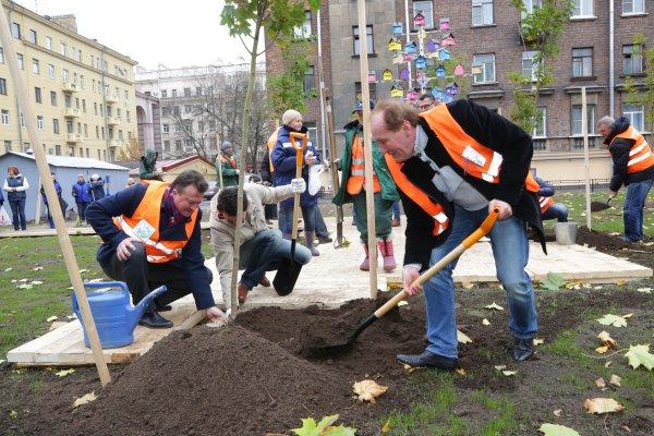 В Петербурге изучат обеспеченность новых районов зелеными насаждениями