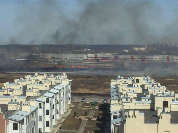 Огонь на поле в Ульяновске может дойти до жилых домов