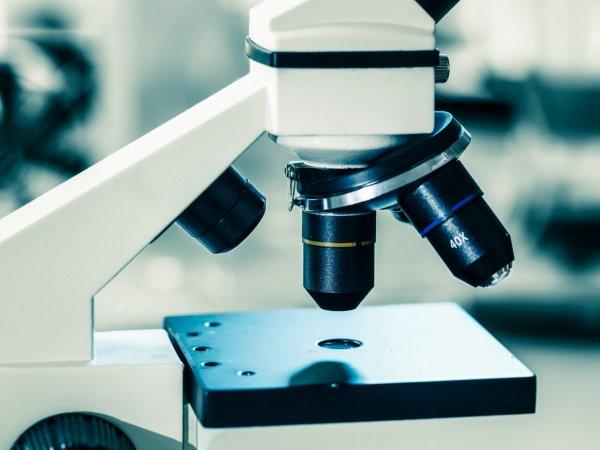 Ученые из Германии научили микроскоп создавать голограммы