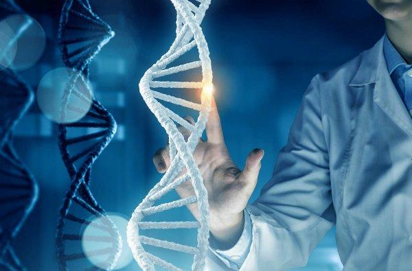 Специалисты: В Европе появятся первые генетически модифицированные люди