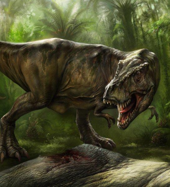Выяснилось, отчего динозавры стали доминирующим звеном миллионы лет назад
