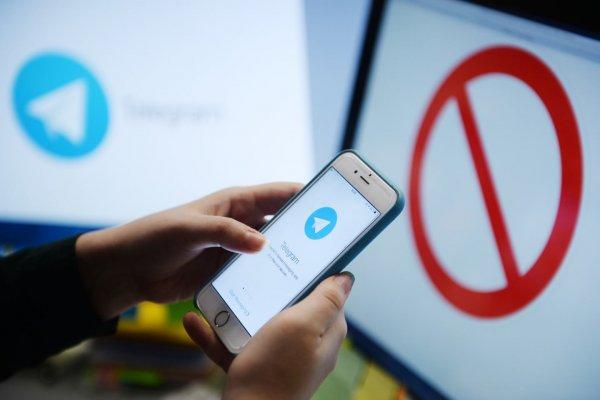 Эксперты: Интерес к Telegram увеличился после его блокировки
