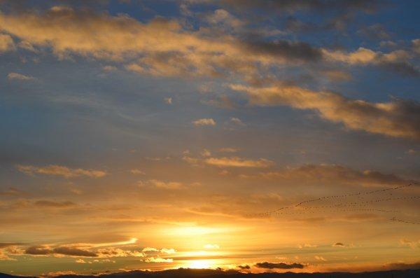 Жителей Нового Уренгоя испугало ромбовидное солнце