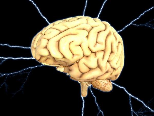 Ученые смогли считать воспоминания после смерти
