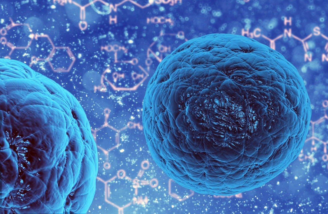 Картинки стволовых клеток