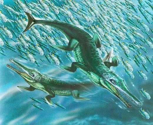 Палеонтологи отыскали промежуточный вид крокодила Юрского периода