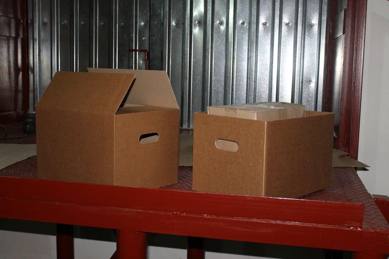 Кладбище не домашних питомцев: вЧебаркуле найдены трупы кошек вкоробках