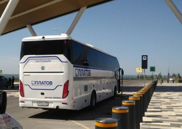 Теперь можно отследить онлайн рейсы автобусов до «Платова» №700 и №800