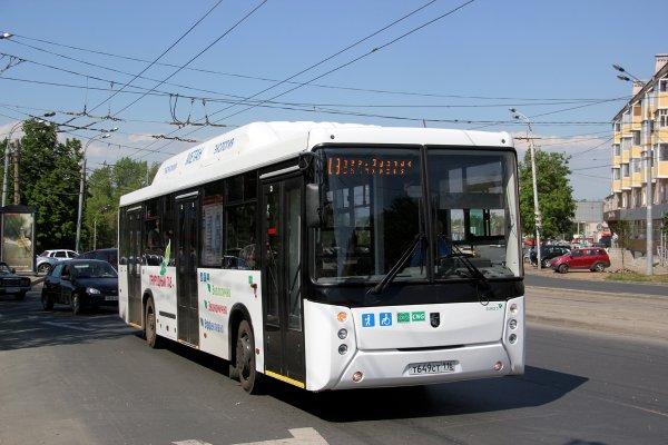 В Ростове закупили 75 автобусов по подозрительно дорогой цене