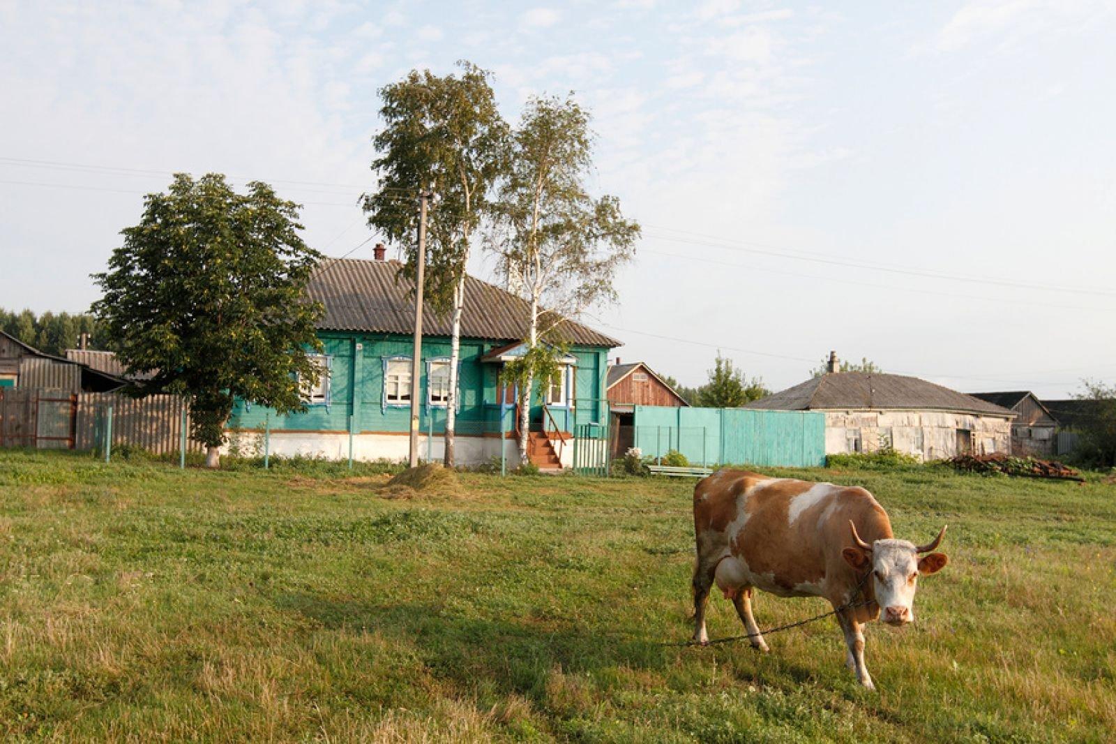 «Самое красивое село Воронежской области»: нарегиональный этап конкурса поступило 32 заявки