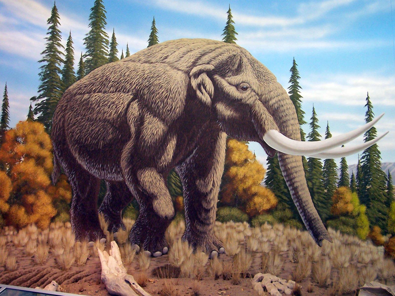 минувшую доисторические животные смотреть картинки перца