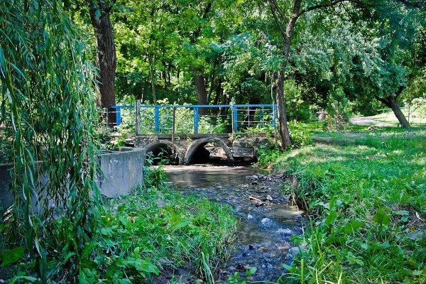 Около Ботанического сада Ростова нашли труп женщины