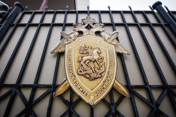 СК объявил в розыск владельца подрядной фирмы «Роскосмоса»