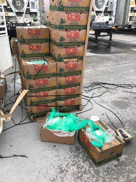 Работники морского порта подарили заключенным техасской тюрьмы бананы с кокаином