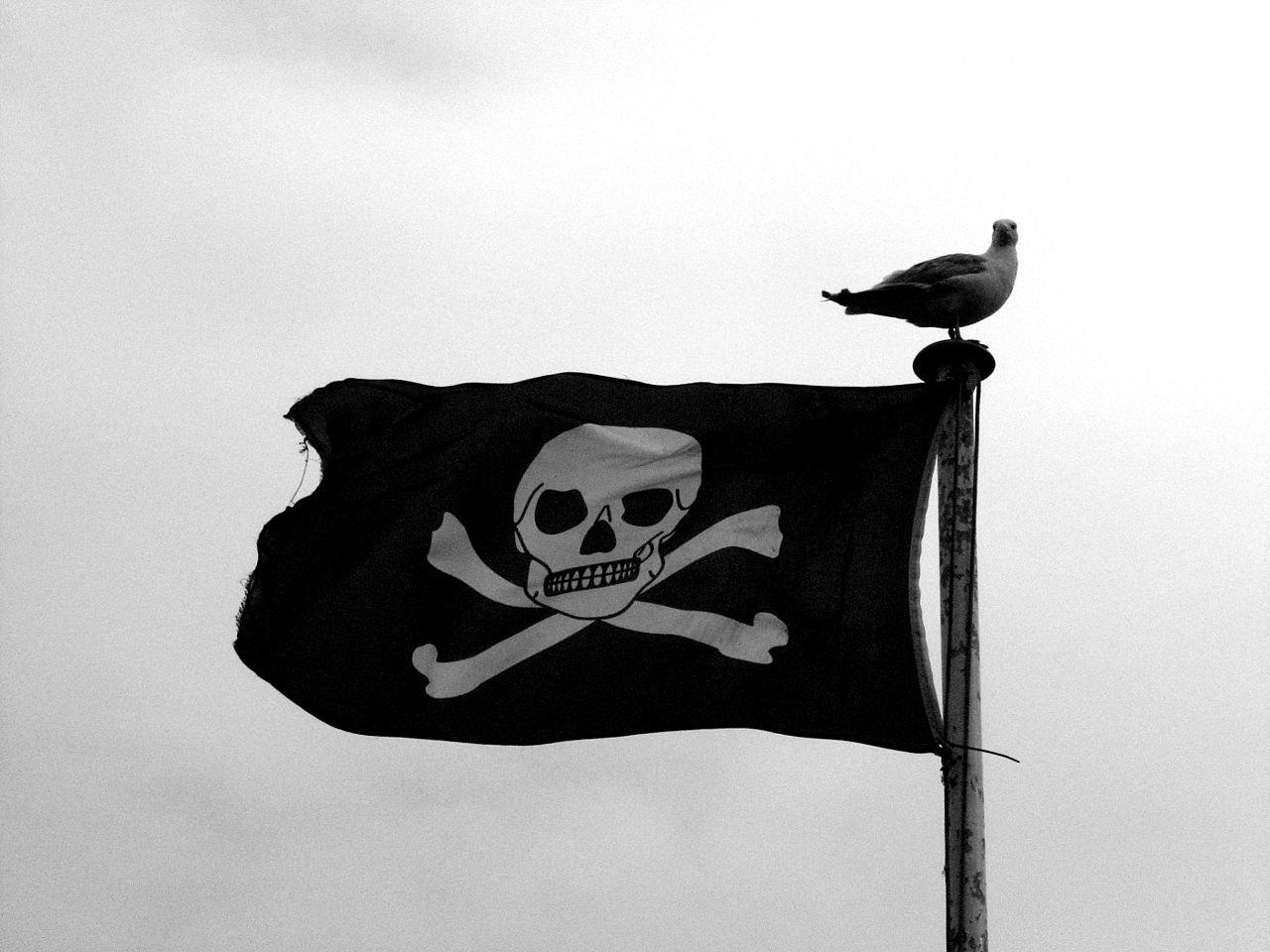 Поисковики и правообладатели подпишут меморандум о борьбе с пиратством 1 ноября