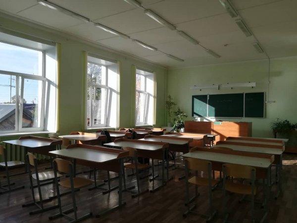 В Красноярском крае учительница предлагала школьнику уроки по английскому в обмен на секс