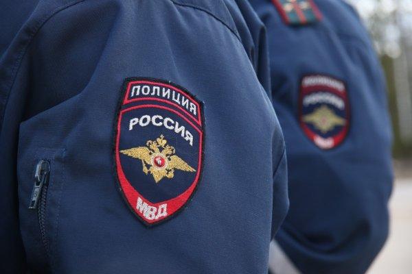 Полиция инициировала проверку заявления о мошеннических операциях с картиной Левитана в Москве
