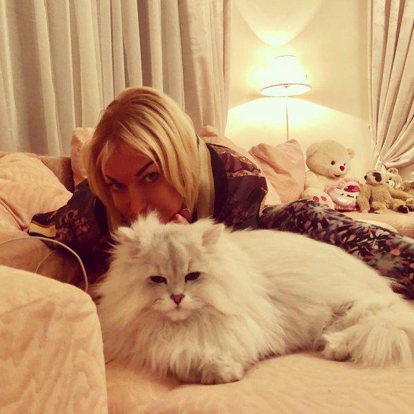 «Гринпис выехал»: Кот Волочковой стал засаленным, как ее голова – Соцсети